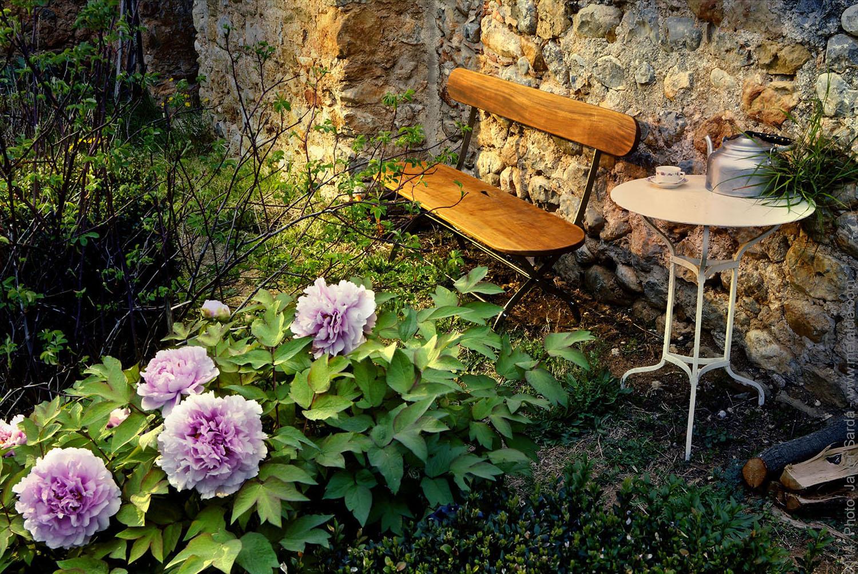 Sitbasic news events for Jardines caseros bonitos